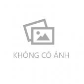 Công ty CP Mạng Trực Tuyến Việt Sin