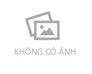Trường Tiểu Học Sài Gòn